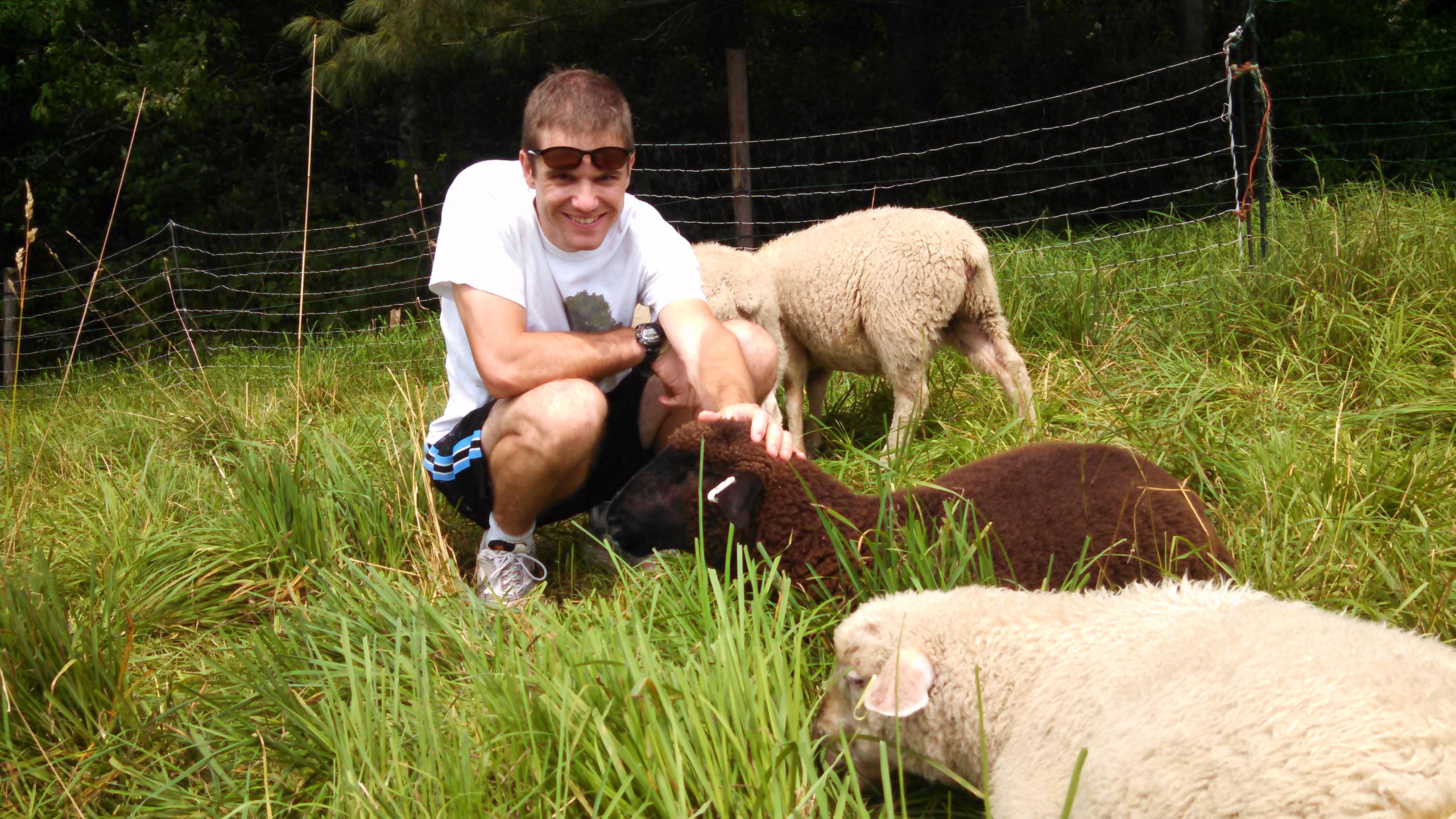 Lee in pasture 2