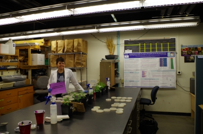 Setting up a soil microbes workshop for Expanding Your Horizons for Girls.