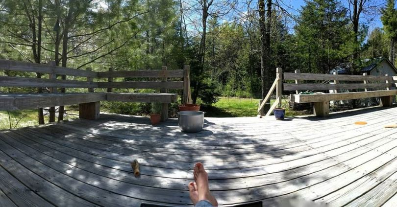 View of a wooden deck with forest behind it.