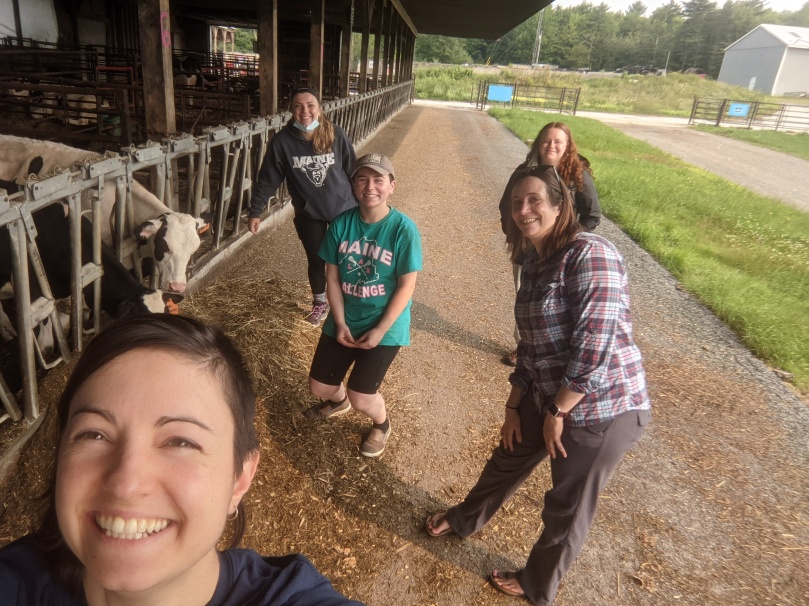 Five women taking a photo together at a farm.  They are standing a few feet apart from each other, and standing in front of a cow feedlot with two cows eating.
